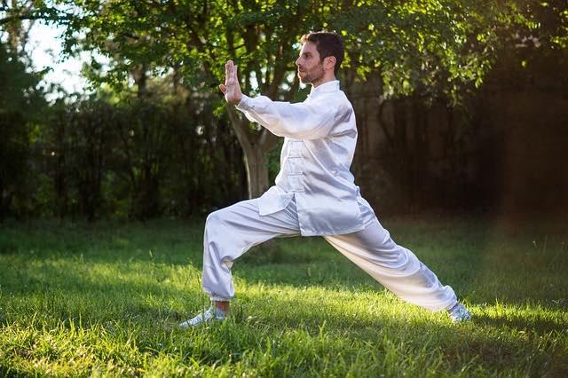 Arts martiaux: esprit, corps et esprit présentés en ligne