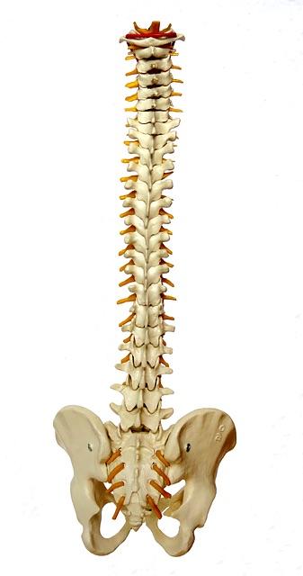 sténose rachidienne affection dégénérative de la colonne vertébrale